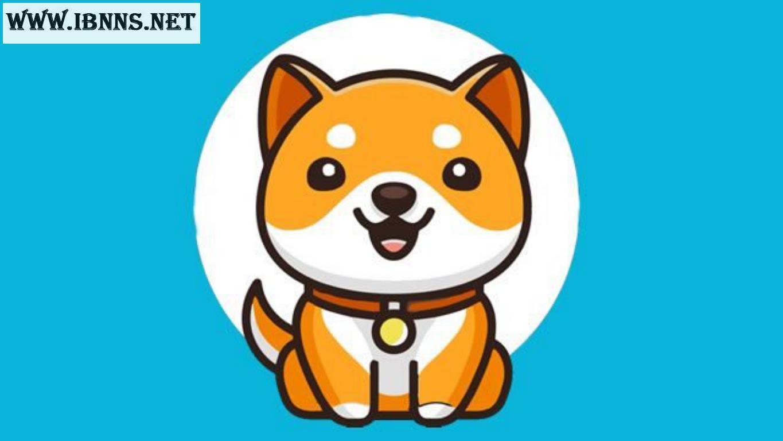 خرید Baby Doge Coin | آموزش خرید بیبی دوج کوین | فروش بی بی دوج