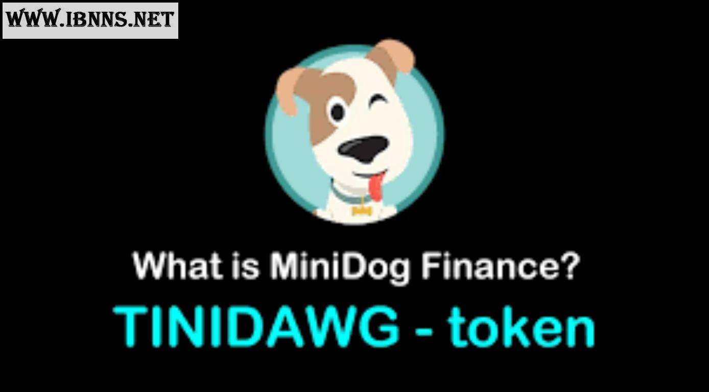 ارز دیجیتال مینی دوج (MiniDog)  چیست؟ - آموزش خرید مینی دوج